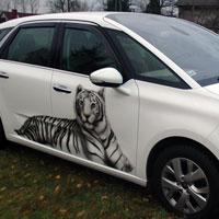 aerograf airbrush bialy tygrys xsara picasso