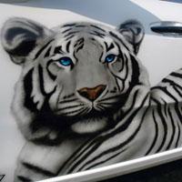 aerograf airbrush bialy tygrys citroen 2014