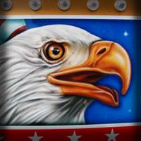 airbrush attraction aerograf art karuzela kolotoc carrousel ferris wheel diabelski młyn american flag flachs rides