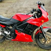 airbrush aerograf na motorcycle wolf warg