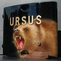 aerograf airbrush ursus niedzwiedz bear